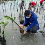 San Miguel Corporation (SMC) Begins Massive Mangrove Planting in Bulacan (SMC Press Release July 29, 2020)