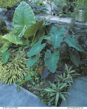 A Short History of Balagtas or Big Double-A (Bigaa) -- from Late 1500's to Present 3