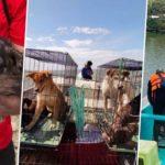 SMC, Animal Kingdom rescue abandoned animals in Taliptip, Bulakan